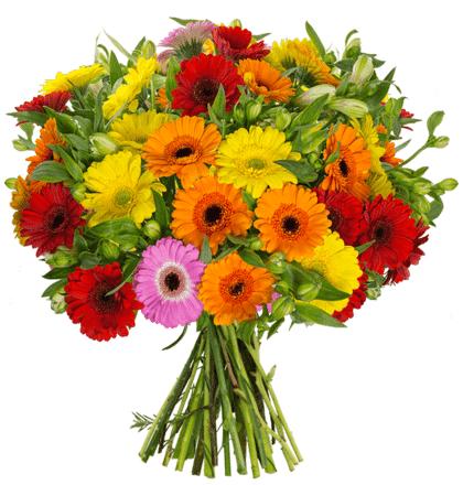 Blumenstrauß FlowerPower